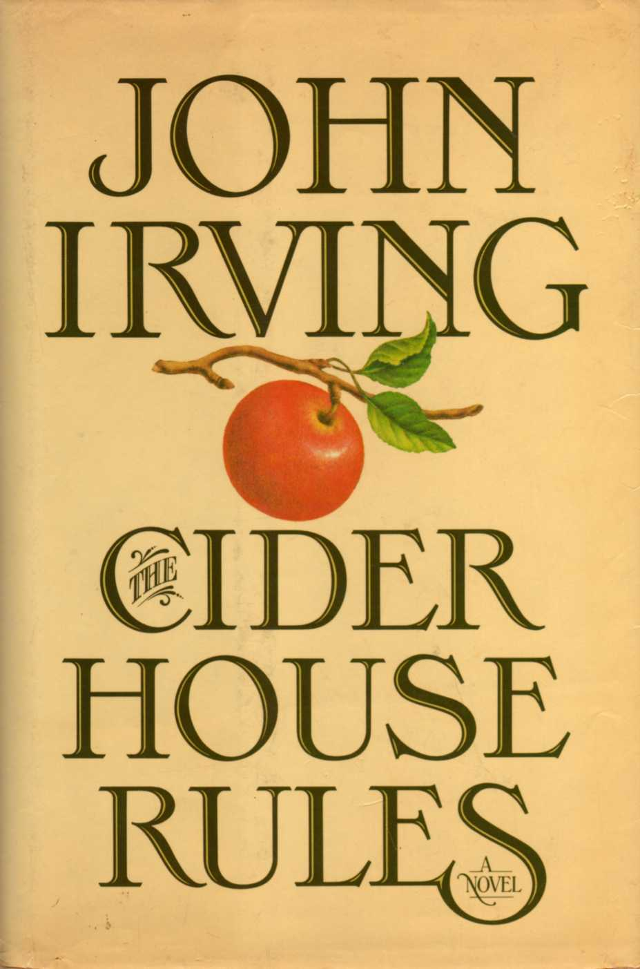 a report on cider house rules a movie by john irving